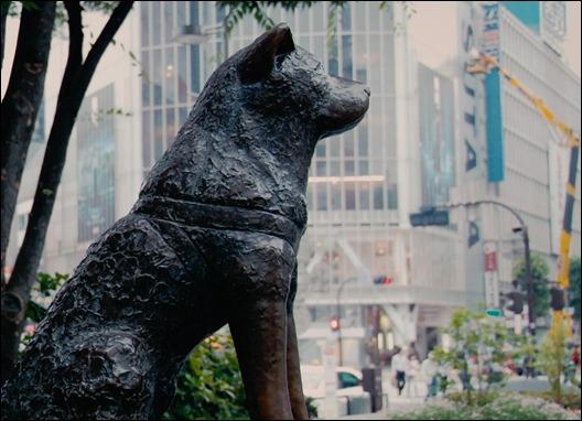 163036Hachiko_A_Dog-s_Story_2009_1080p_BluRay_Rus_Eng__mkv_019.jpg