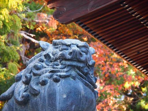 [写真]諏訪大社下社秋宮のこま犬