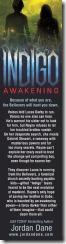 2x8_IndigoAwakening_back3_opt