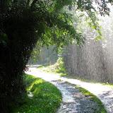 Camino 2010 534.JPG