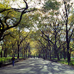 Promenade, Central Park, New York