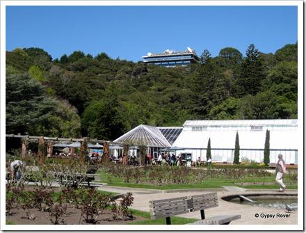Lady Norwood Rose Garden, Wellington. Carter Observatory on the skyline.