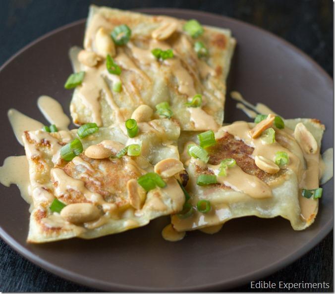 Thai Inspired Raviolis with Cauliflower Veggie Fililng and Creamy Peanut Sauce (11 of 13)