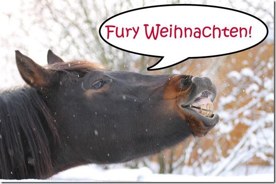 Fury Weihnachten