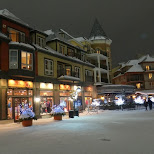 the village in Collingwood, Ontario, Canada