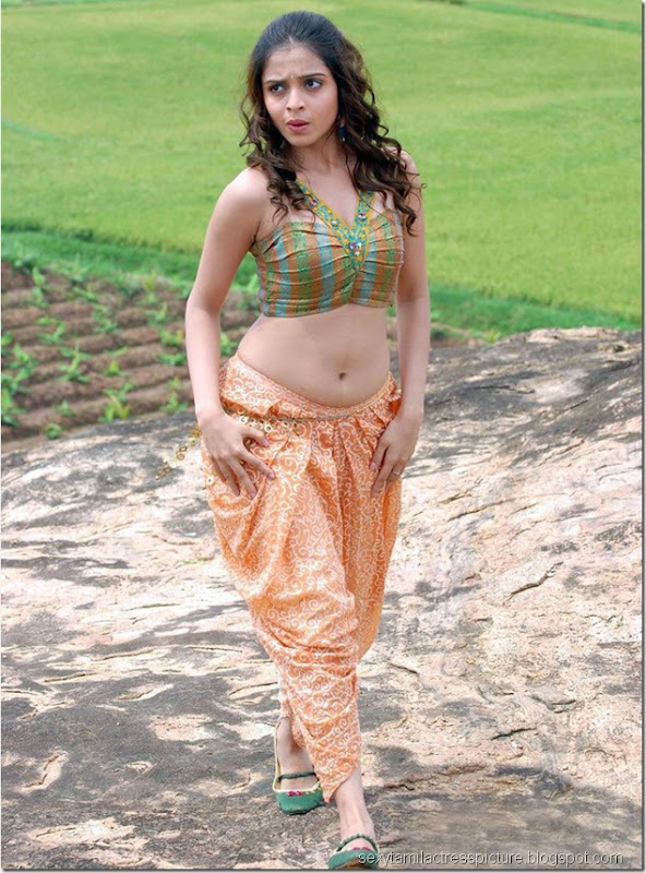 Hot-actress-Sheena-Shahabadi-hot-navel-legs-picture