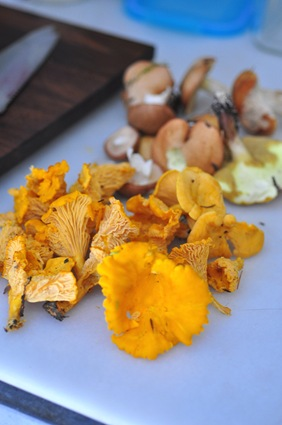 chanterelles_chopping_block
