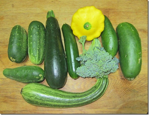 Assortment of cukes, squash and broccoli