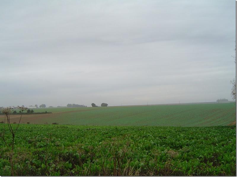 En ce matin brumeux d'octobre 2012 on aperoit difficilement la ferme (reconstruite) de La Signy sur la crte  gauche. Le bosquet d'arbre  droite est situ  l'emplacement de la ferme de Touvent