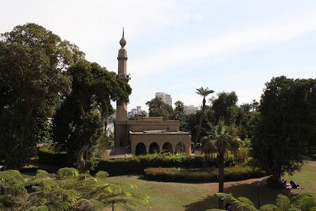 Imagini Egipt: moschee in Cairo