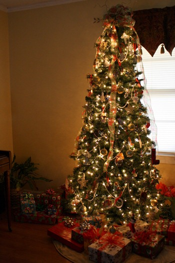It's begining to look a lot like Christmas! (2011) 049