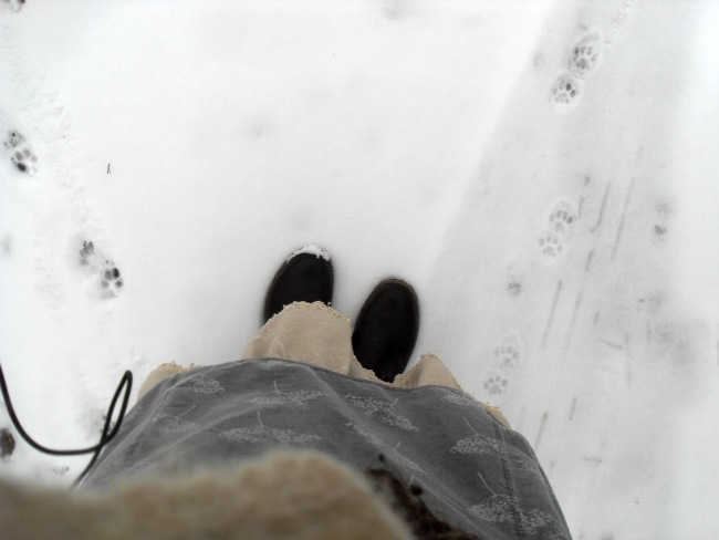 Sne i betonforstaden