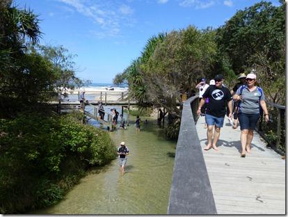 April 2013 Maryborough and Fraser Island 185
