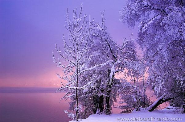 paisagens-de-inverno-winter-landscapes-desbaratinando (6)