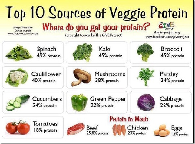 Top 10 Protein