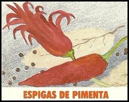 Espiga de Pimenta