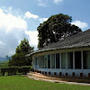 Tea Sanctuary Munnar