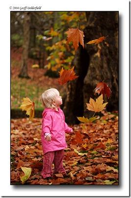 Autumn_by_BritishBeef