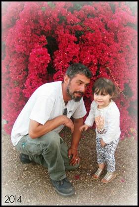 daddy cindy flower bush smile