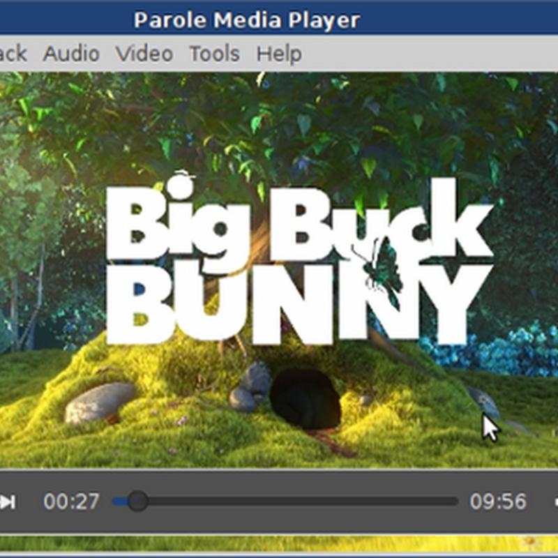 Parole Media Player: introduction.