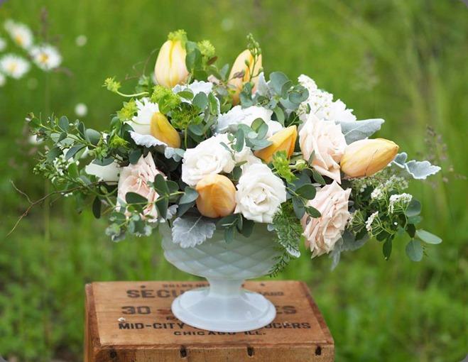 8586_10151936155683362_132001313_n alluring blooms