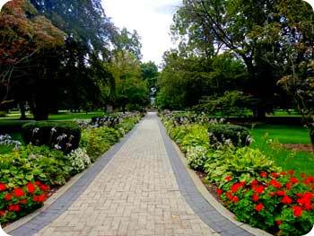 1a-flower-garden