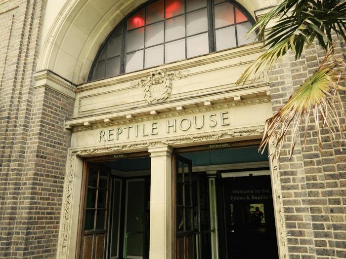 London-Zoo-Reptile-House