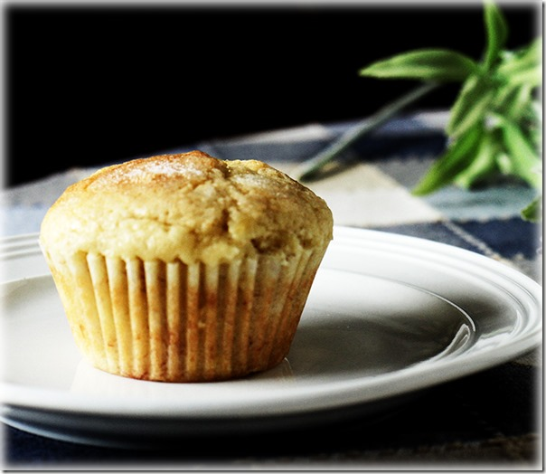 muffin-on-a-plate