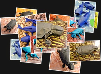 View Origami Turtle, koi, tigerbeetle
