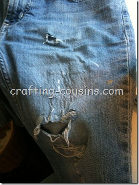 Mending Shorts (2)