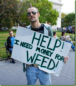 occupy weed