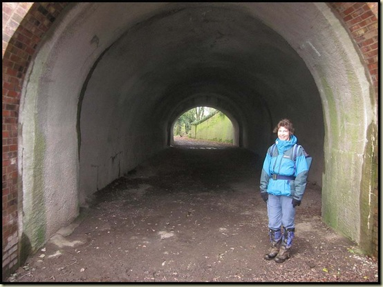 Shropshire Union Canal underpass by Newton