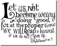 Galatians 6 8-9