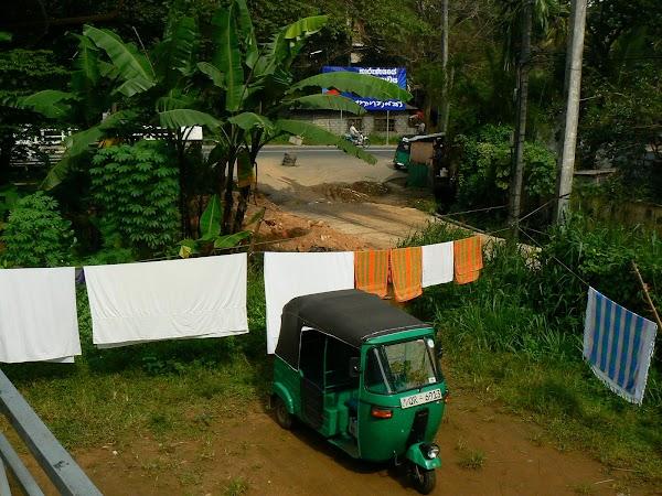Cazare Sri Lanka: Palm Garden Guesthouse Kandy tuk tuk.JPG