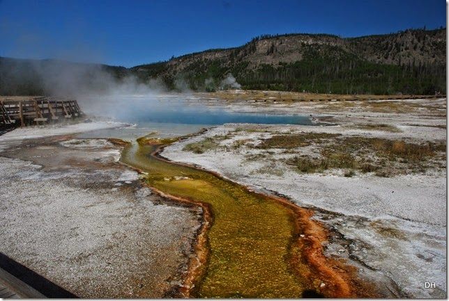 08-11-14 A Yellowstone National Park (240)
