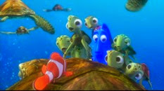 36 les petites tortues