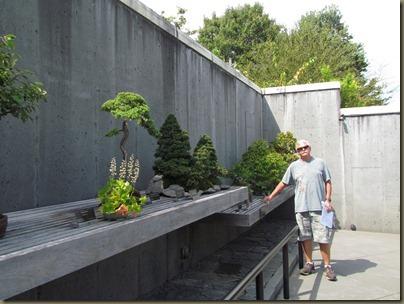 bonsai at North Carolina Arboretum
