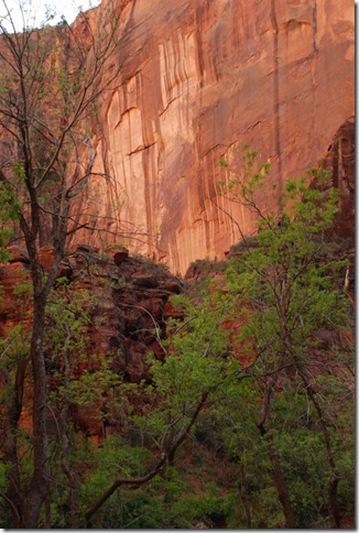 05-03-13 C Sunset Shuttle Ride Zion 021
