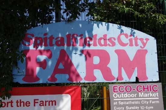 city farm 4