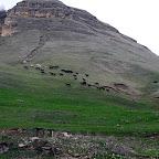 kavkaz-2010-3kc-21.jpg