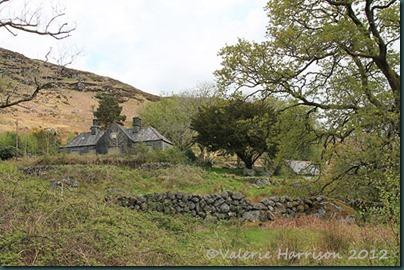 15-derelict-cottage