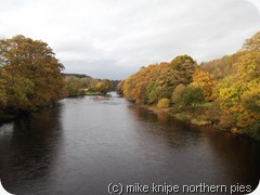 river tees autumn 2011