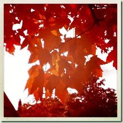 Fall2012