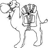 camello9.jpg