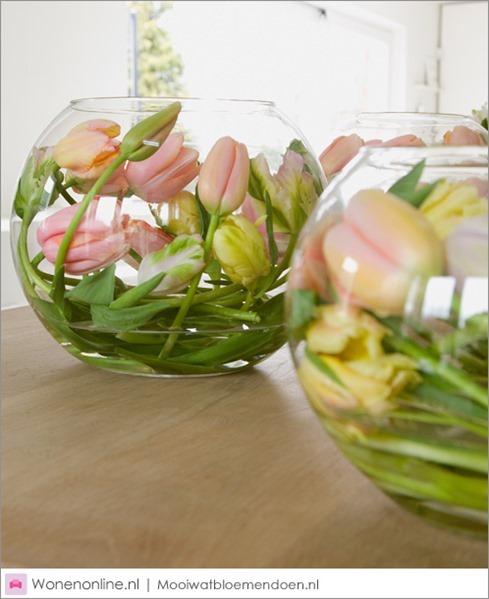 aan-de-slag-met-tulpen-2