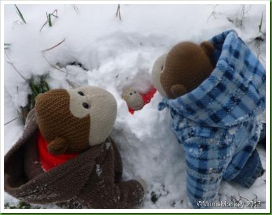 snowcave.