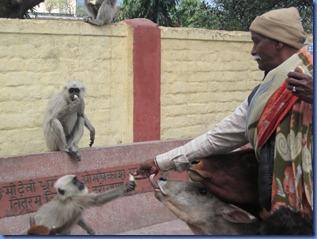 india 2011 2012 671