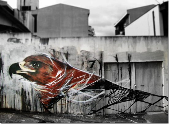 graffiti-birds-street-art-L7m-7