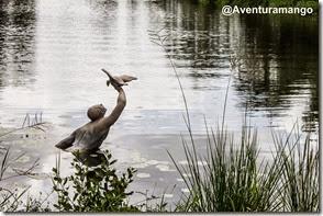 Caçador de Patos, Laguna del Tesoro, Cuba