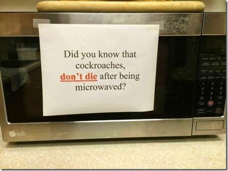 microwave-food-hard-020